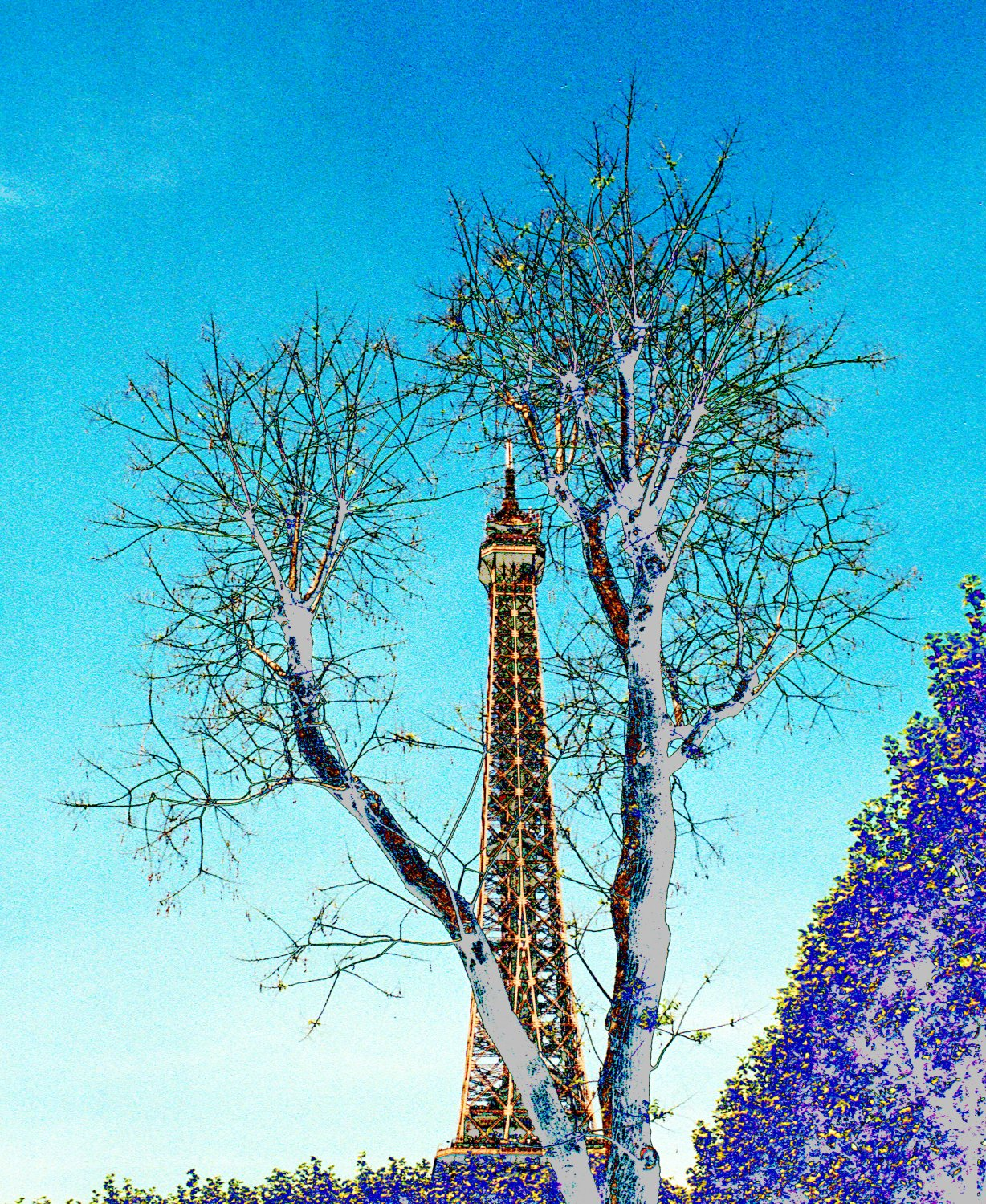 - The Eiffel Tower with trees. - Paris, eiffel tower - Tony Karp, design, art, photography, techno-impressionist, techno-impressionism, aerial photography , drone , drones , dji , mavic pro , video , 3D printing - Books -