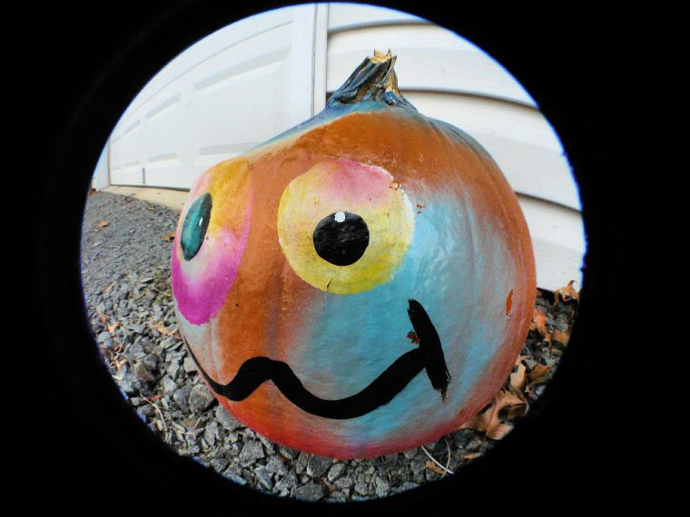 Hilarious pumpkin - - My granddaughter thinks this pumpkin is