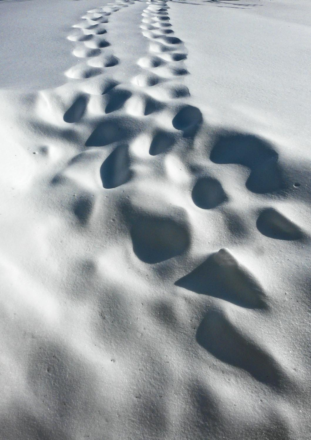 tracks in the snow-  Panasonic DMC-FZ18 - This is what snowbound really looks like. - Tony Karp, design, art, photography, techno-impressionist, techno-impressionism, aerial photography , drone , drones , dji , mavic pro , video , 3D printing - Books -