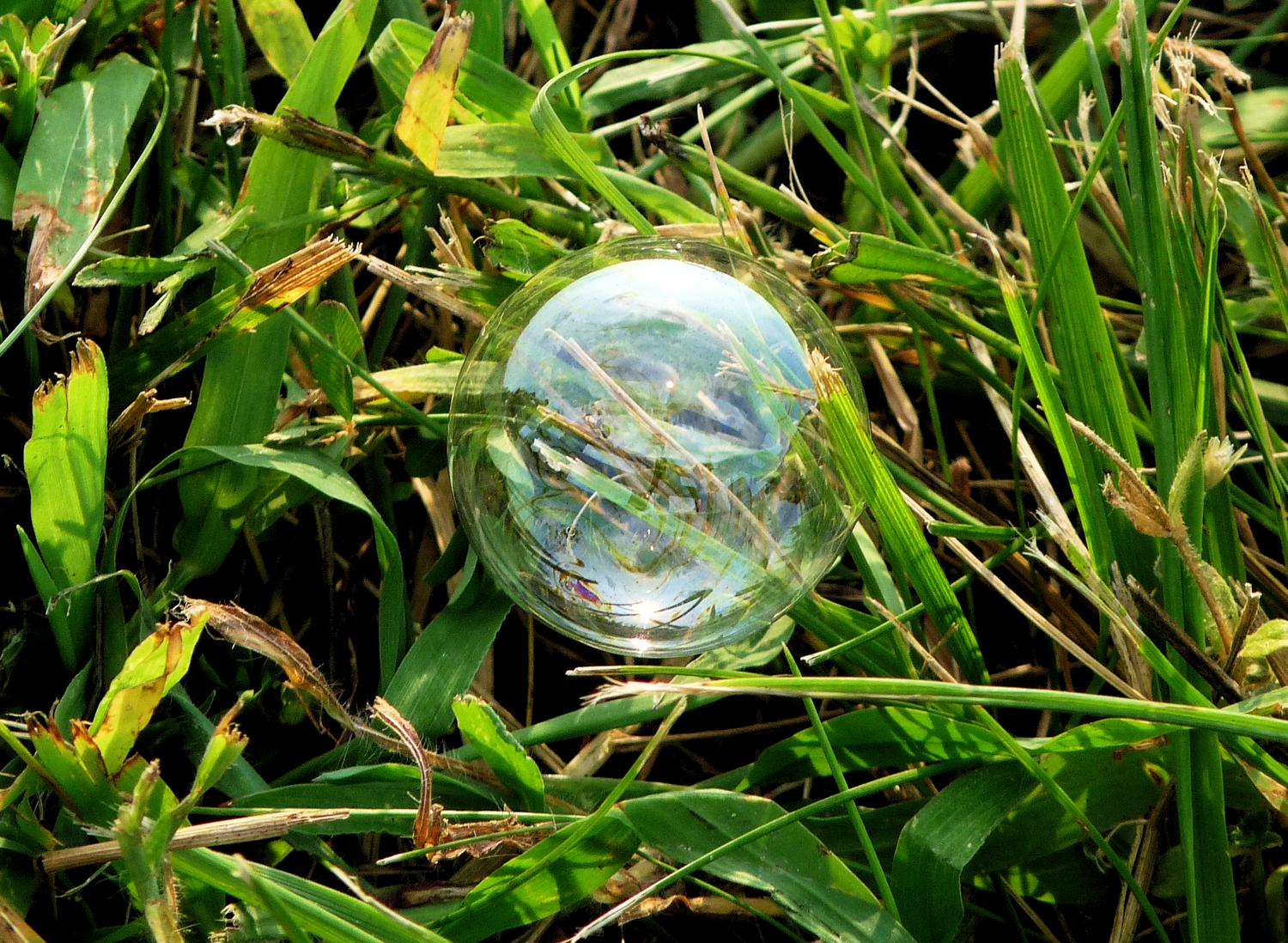 - A soap bubble on the grass. - Panasonic DMC-FZ28 -- At the Flying Circus - Bealton Virginia - Tony Karp, design, art, photography, techno-impressionist, techno-impressionism, aerial photography , drone , drones , dji , mavic pro , video , 3D printing - Books -
