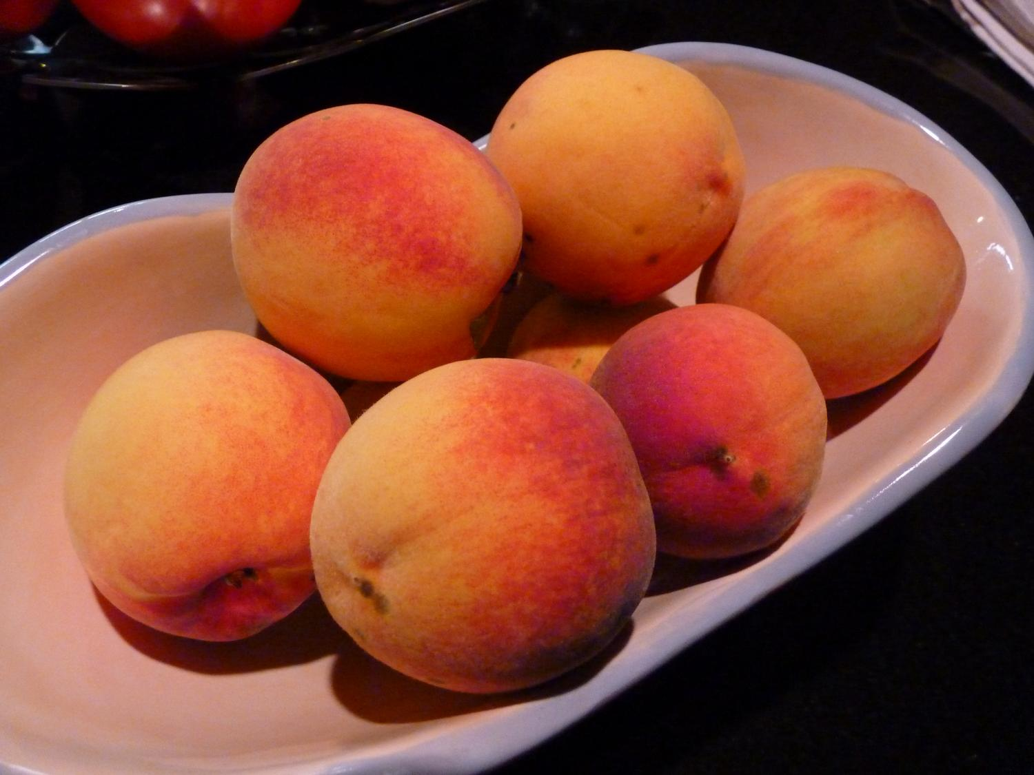- Peaches at my son's house. - Panasonic DMC-FZ35 - Tony Karp, design, art, photography, techno-impressionist, techno-impressionism, aerial photography , drone , drones , dji , mavic pro , video , 3D printing - Books -