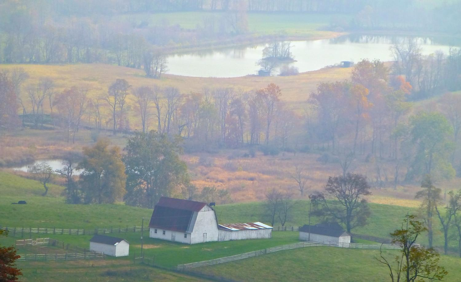 - Another view of the farm, as seen through the fog<br>--- Click to see ORIGINAL --- - Sky Meadows State park - Virginia - Cows - Panasonic DMC-ZS20 - Tony Karp, design, art, photography, techno-impressionist, techno-impressionism, aerial photography , drone , drones , dji , mavic pro , video , 3D printing - Books -